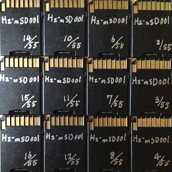 Hz-mSD001